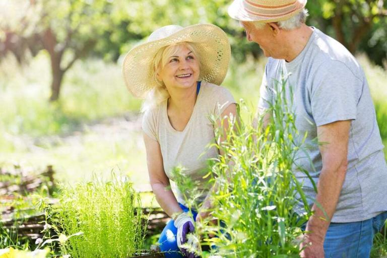 senior couple smiling and gardening outside