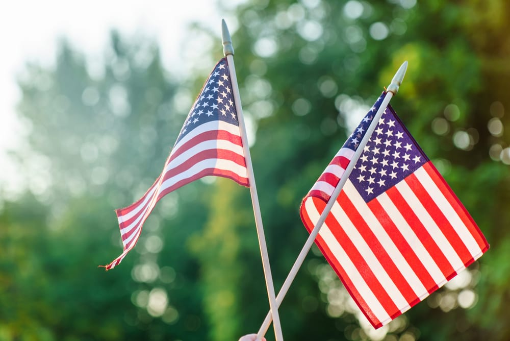 Two small American flags held up in front of trees in summer